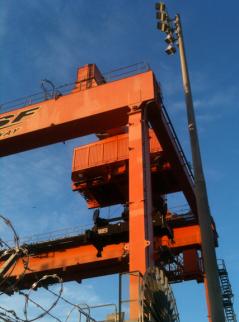 Crane-1v_2213